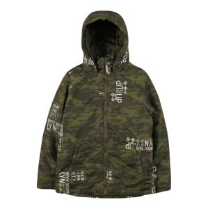 NAME IT Zimná bunda  zelená / tmavozelená / svetlozelená