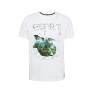 ESPRIT Tričko  biela / čierna / zelená