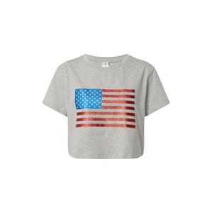 KENDALL + KYLIE Tričko  sivá melírovaná / modrá / červená