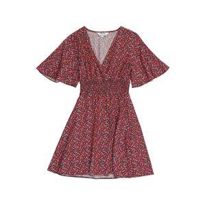 Dorothy Perkins (Petite) Letné šaty  červená / zelená / biela