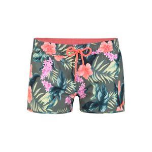 BRUNOTTI Surferské šortky 'Glennis'  zelená / ružová
